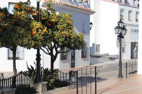 Mijas Orangenbaum im Ort Städte und Dörfer