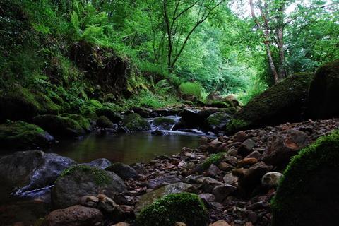 Landschaften und Natur Flusslauf in Kantabrien