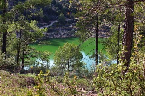 Laguna de la Cruz Cuenca